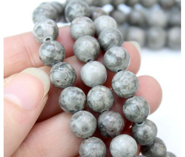 Ocean Fossil Jasper Beads, Grey, 8mm Round