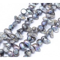 Freshwater Pearls, Peacock Blue, 7-18mm Baroque