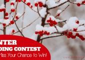 Winter Beading Contest: Amazing Prizes to Be Won!