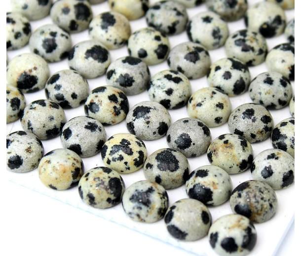 Dalmatian Jasper Cabochons, 8mm Round, Pack of 10