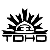 TOHO Beads