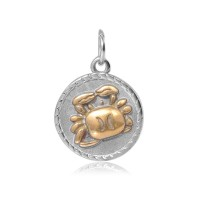 20mm Zodiac Sign Cancer Charm, Antique Silver and Gold
