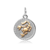 20mm Zodiac Sign Scorpio Charm, Antique Silver and Gold