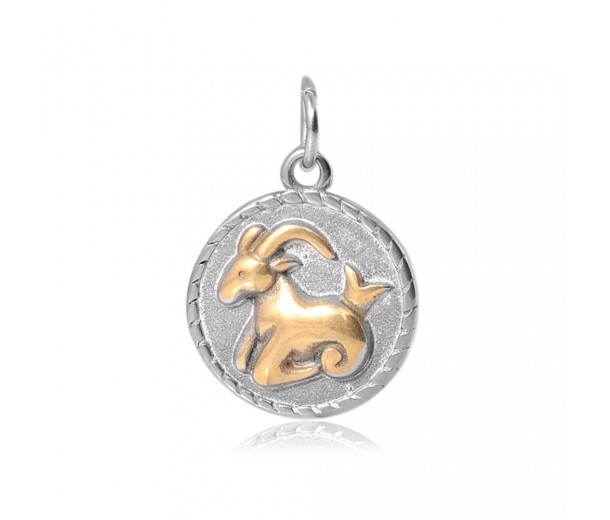20mm Zodiac Sign Capricorn Charm, Antique Silver and Gold