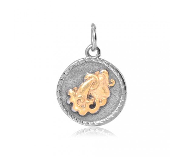 20mm Zodiac Sign Aquarius Charm, Antique Silver and Gold