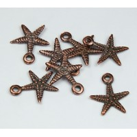 19mm Starfish Charms, Bronze