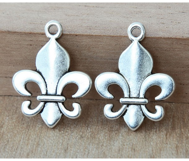 22x17mm Thick Fleur-de-Lis Charms, Antique Silver, Pack of 8