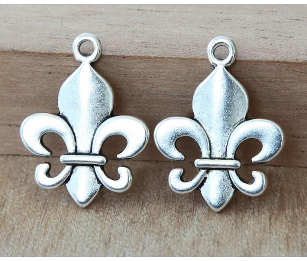 22x17mm Thick Fleur-de-Lis Charms, Antique Silver, Pack of 8