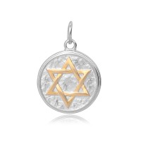 20mm Stainless Steel Star of David Charm, Antique Silver and Gold
