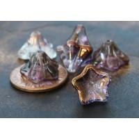 Light Copper Amethyst Luster Czech Glass Beads, 8x13mm Trumpet Flower
