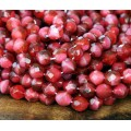 Fuchsia Pearl Czech Glass Beads, 8mm Faceted Round
