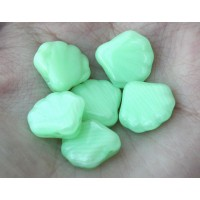 Light Coral Green Czech Glass Beads, 14mm Shell