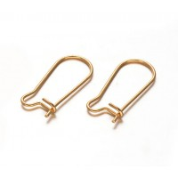 20mm Stainless Steel Kidney Ear Wires, Gold Tone, Pack of 20