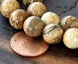 Picture Jasper Beads, 10mm Round