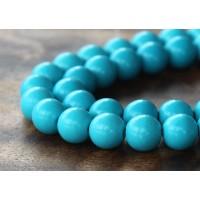 Howlite Beads, Blue, 10mm Round