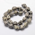 Dalmatian Jasper Beads, Cream, Large Nugget
