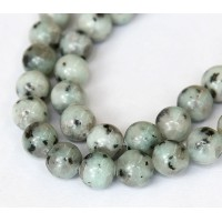 Sesame Jasper Beads, Light Teal, 10mm Round