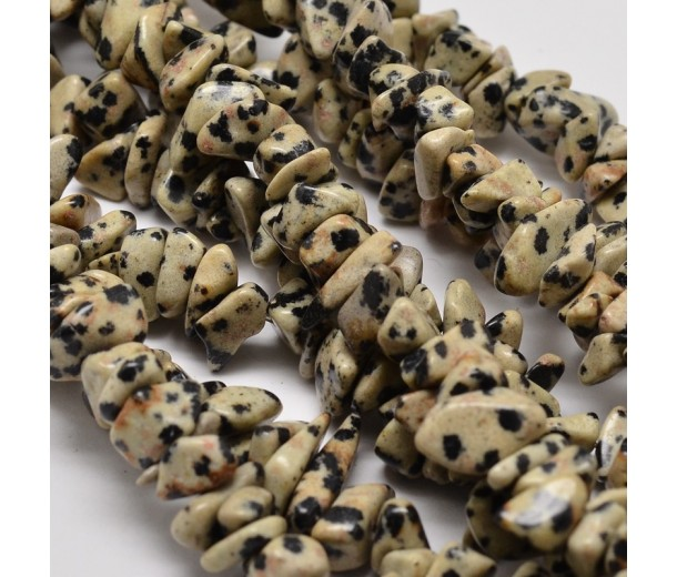 Dalmatian Jasper Beads, Cream, Medium Chip