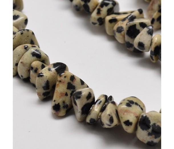 Dalmatian Jasper Beads, Natural, Medium Chip