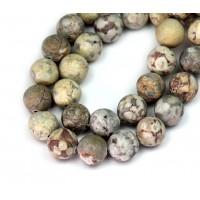 Matte Ocean Fossil Jasper Beads, 10mm Round