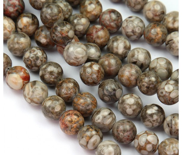 Ocean Fossil Jasper Beads, 8mm Round