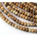 Picture Jasper Beads, 5x8mm Smooth Rondelle, 15 Inch Strand