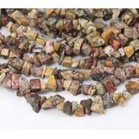 Leopard Skin Jasper Beads, Medium Chip