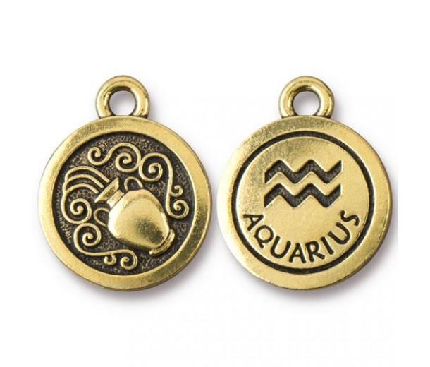 19mm Zodiac Sign Aquarius Charm by TierraCast, Antique Gold