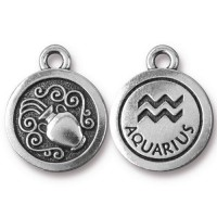 19mm Zodiac Sign Aquarius Charm by TierraCast, Antique Silver