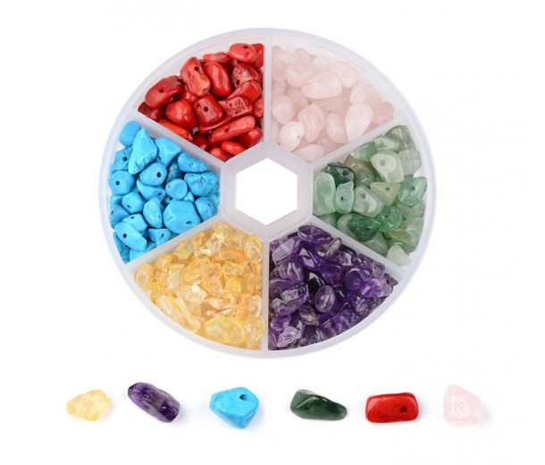 Assorted Gemstone Chips with Organizer, 6 Types