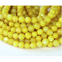 Shell Beads, Lemon Yellow, 6mm Round