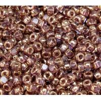 6/0 Matubo 3-Cut Seed Beads, Transparent Bronze